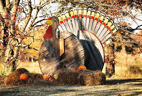 Photo courtesy of MorgueFile.com