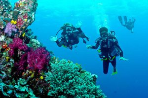 The clear blue waters off the coast of Fiji await MTSU students who will examine the area's marine biology on scuba diving excursions during their study-abroad trip May 22-31. (Photo courtesy of boldearthblog.com)