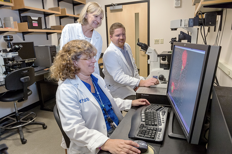 Dr. Mary Farone, seated in the foreground, Dr. Sharon Berk and MTSU doctoral candidate Brock Arivett view a graphic image of the amoebae that are part of their nearly 20-year study with Tennessee Tech researchers finding bacteria in a hot tub and cooling towers in Cookeville, Tennessee. The two bacteria species, which were named for Berk, are capable of infecting cell nuclei. (MTSU photo by J. Intintoli)