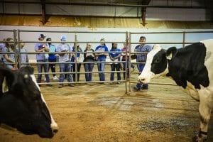 MTSU agriculture Raider Roundup tests high school FFA skills