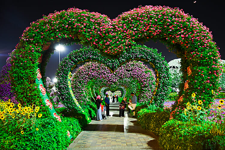"The ""Hearts Passage"" at the Dubai Miracle Garden in Dubai, United Arab Emirates, is a much more pleasant route than MTSU's annual ""Tunnel of Love"" event, which promotes prevention of sexually transmitted diseases. The 2018 ""Tunnel of Love"" is set Wednesday, Sept. 19, in the Student Union ballroom. (Photo courtesy of Shahbaz Akram/Pexels)"