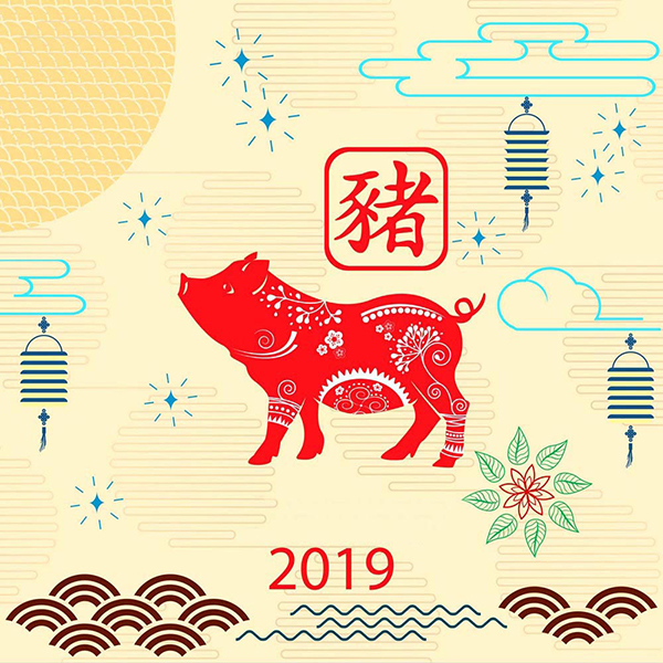 "Chinese New Year 2019 , ""Year of the Boar"""