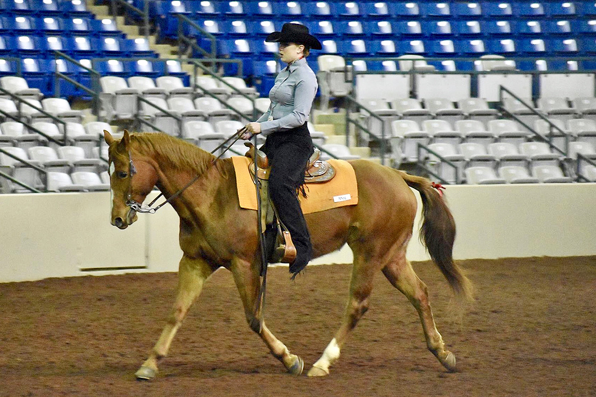 Gallatin, Tenn., product Kailey Vande Kamp, an MTSU senior, qualified for the IHSA Nationals in Western Intermediate Horsemanship. The nationals will be held in Syracuse, N.Y., May 2-5.