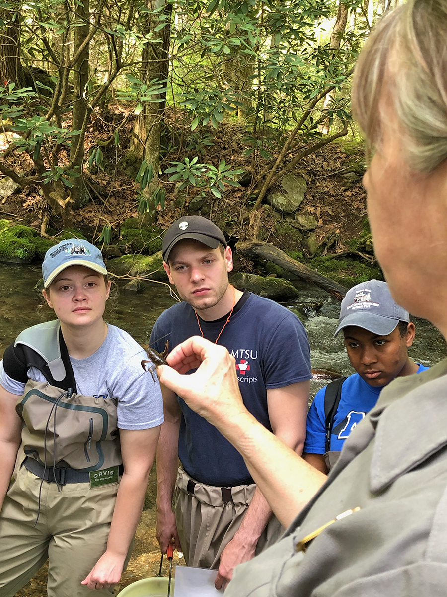 Becky Nichols, foreground right, Great Smoky Mountains National Park entomologist, shows MTSU students Bekkah Riley, left, Cody Keck and Infiniti Bristol a crawfish collected during a stream sampling on a recent class visit to the park. (Submitted photo by Ashley Morris)