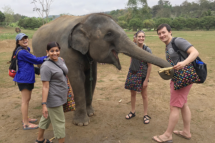 Robert Owen, right, greets an equally happy elephant during a January 2018 study-abroad trip to Kanta Elephant Sanctuary in Chiang Mai, Thailand. Accompanying Owen are, from left, MTSU honors student Jocelyn Mercado, MTSU alumna Sharmila Patel, and MTSU honors student Skylar Raney. Owen's extensive travels and his philanthropic and academic achievements impressed the Mayo Clinic Alix School of Medicine in Rochester, Minnesota, which admitted him following his spring 2019 graduation from MTSU. The Honor Society of Phi Kappa Phi gave him an $8,500 fellowship earlier this year. (Photo submitted)