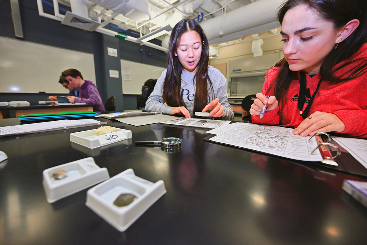 Tullahoma High School students Eleni Pisinos, left, and Molly Georgas work together to put a time stamp on old rocks that were part of the fossils event Saturday, Feb. 22, in a Davis Science Building classroom during the 25th Regional Science Olympiad at MTSU. (MTSU photo by Cat Curtis Murphy)