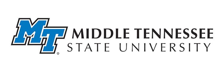 MT horizontal branding logo