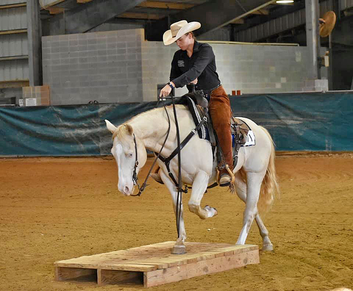 Junior Lindsay Gilleland of Powder Springs, Ga., competed for the MTSU equestrian and stock horse teams that qualified for national competitions, which were canceled because of the coronavirus pandemic. (Submitted photo by Andrea Rego)