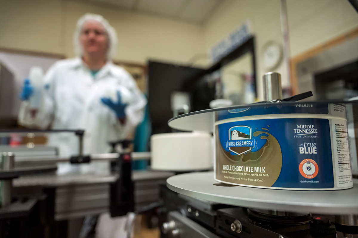 The new MTSU Creamery chocolate milk label comes off the new labeler, featuring larger MTSU, I Am True Blue and Tennessee Milk logos. Recent MTSU graduate Chalyce Gammon, in background, waits for labels to come to her on new round bottles. (MTSU file photo by J. Intintoli)