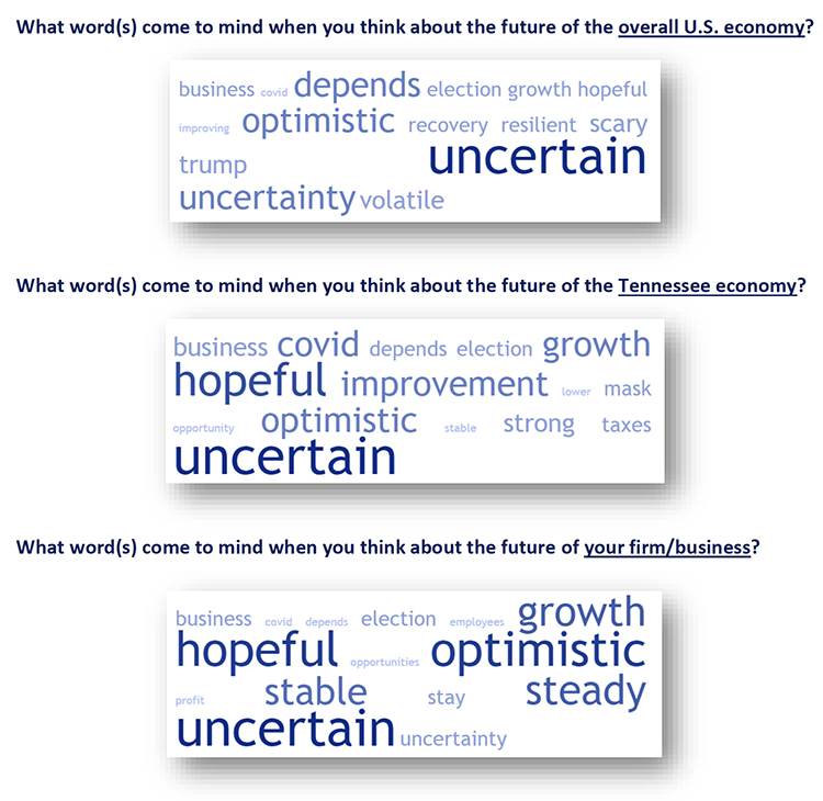 This word cloud shows the words most often given by respondents to the July Tennessee Business Barometer survey when asked to report the word, or words, that came to mind when thinking about the future of the U.S. economy, Tennessee economy and their businesses or firms. (Courtesy of the MTSU Office of Consumer Research)