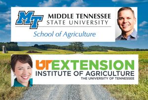 Heather Sedges, an associate professor in the UT Extension Department of Family and Consumer Sciences, and Chaney Mosley, assistant professor of agricultural education in the MTSU School of Agriculture. Farmland photo courtesy of Unsplash.