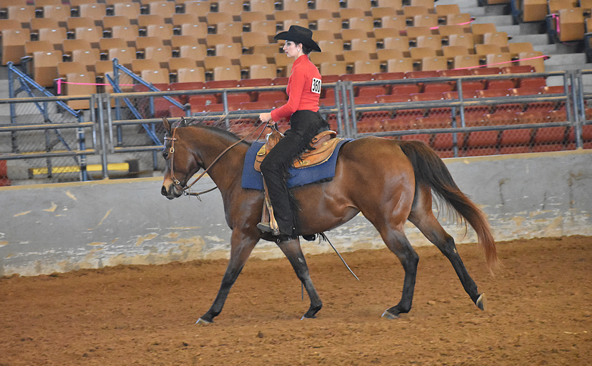 MTSU freshman Carolyn Trouten of Cleveland, Tenn., rode to a second-place finish during the IHSA competition at Murray State University this fall. (Submitted photo)