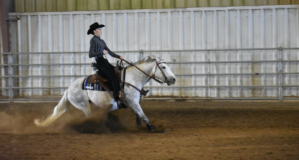 MTSU junior Taylor Meek of Murfreesboro enjoyed High Point Rider and second-place finishes during the IHSA competition at Murray State University this fall. (Submitted photo)