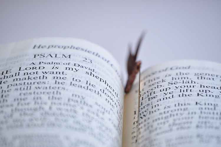 This photo shows the familiar Psalm 23 of the Bible. (Photo by Thomas Shockey from Pexels)