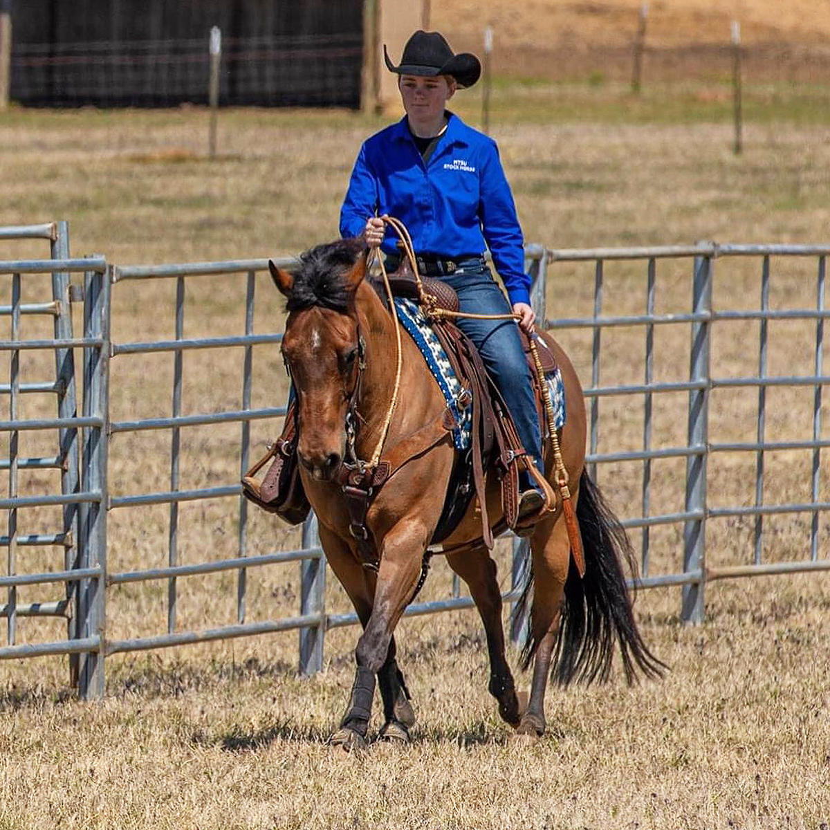 Louann Braunwalder, a freshman fermentation science major from Lascassas, Tenn., rode Twentyeventwister to the ASHA National Youth Pleasure & Reining Championship in the National Champion, Youth 14-18 division April 16-17 in the Nolan County Coliseum in Sweetwater, Texas. (Submitted photo by Gary Cox)