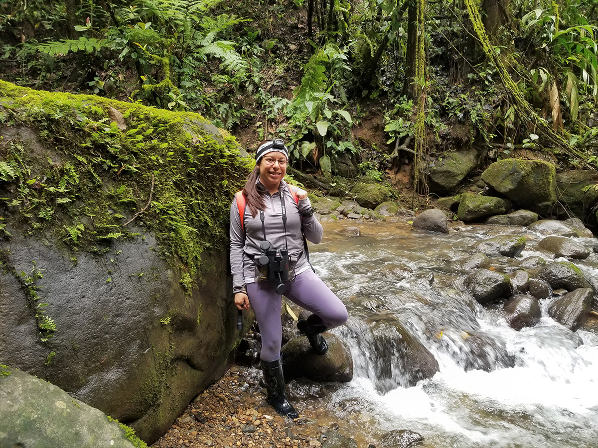 MTSU senior biology major Denise Ortega of Madison, Tenn., is shown while conducting lizard research at a Costa Rica river in 2019 while on a National Science Foundation research trip. Ortega, who has received a 2021 Goldwater Scholarship, plans to graduate in December. (Submitted photo by Janelle Talavera)