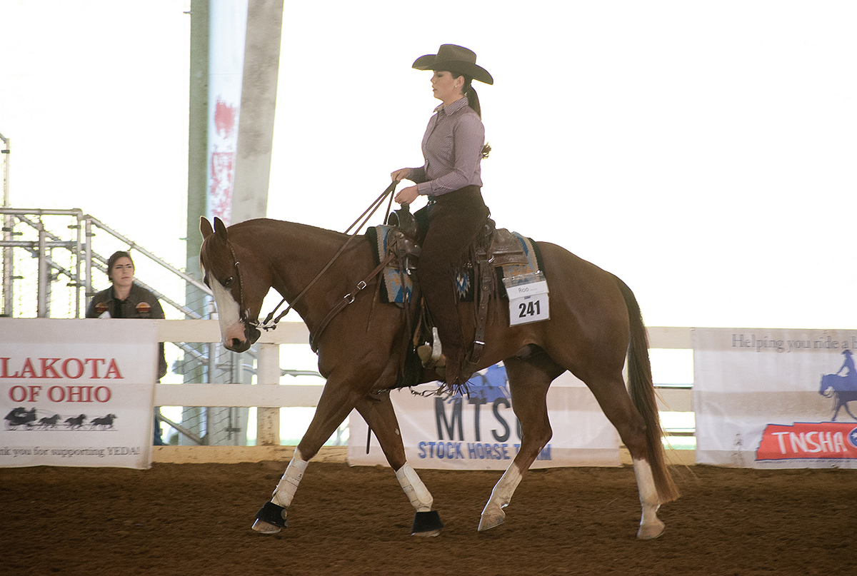 MTSU sophomore rider JoBeth Scarlett of New Market, Tenn., rode her horse to two individual championships, one reserve title and a third-place finish at the YEDA Western Collegiate Celebration, hosted by the Youth Equestrian Development Association recently in Cleveland, Tenn. (Submitted photo by Dawn Nieman)