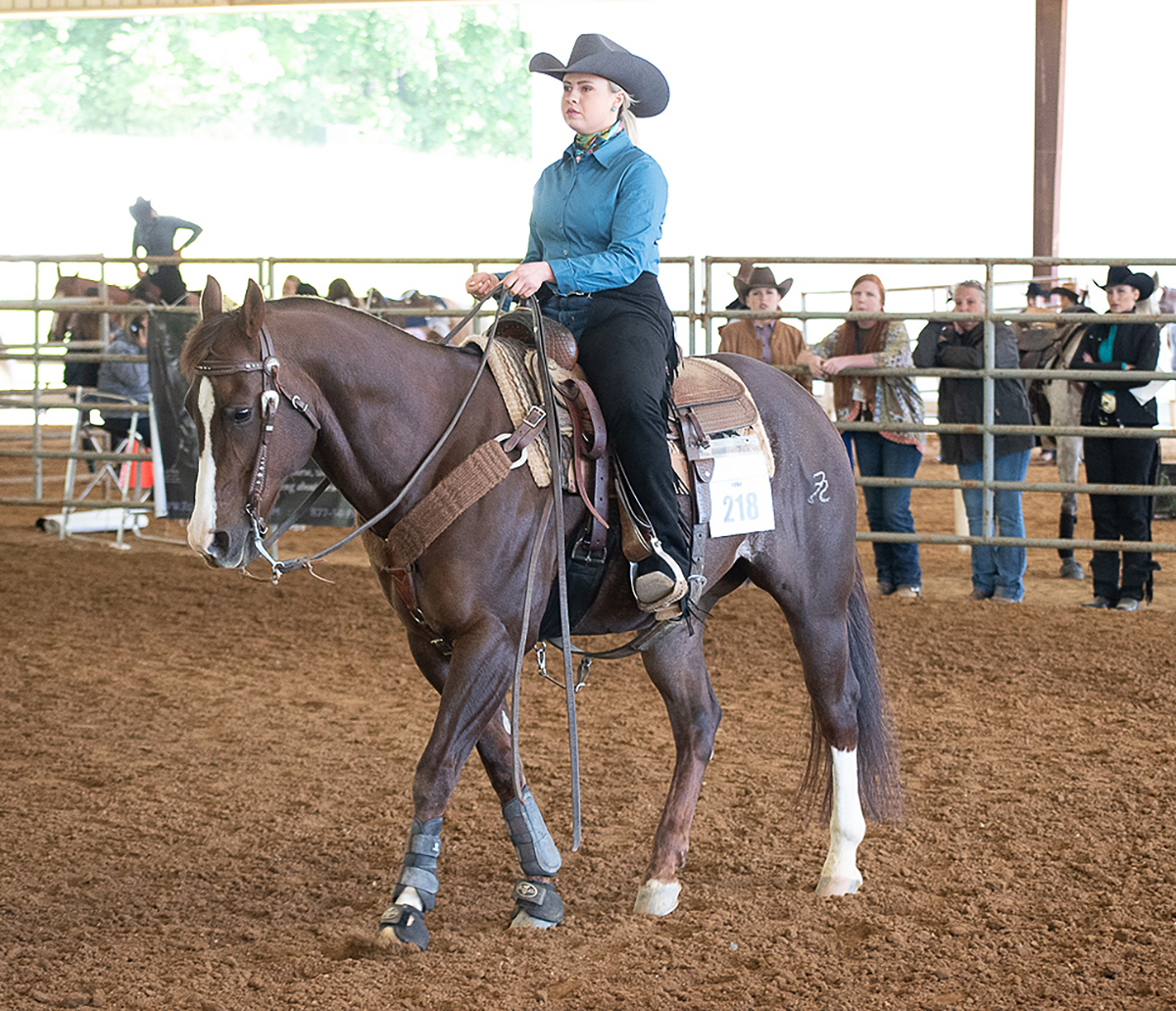 MTSU junior Zee Petree of Knoxville, Tenn., earned an individual championship and two fourth-place finishes at the 2021 YEDA Western Collegiate Celebration, hosted by the Youth Equestrian Development Association recently in Cleveland, Tenn. (Submitted photo by Dawn Nieman)
